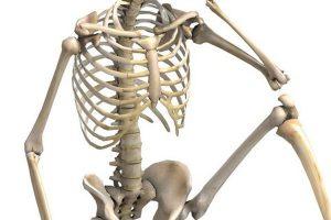 How Dense Are You Bones